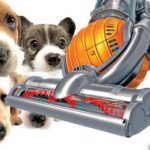 The Facts You Need to Know About Pet Hair Vacuum!