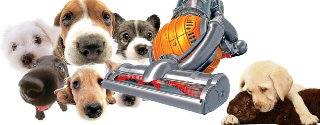 bact vacuum for pet hair